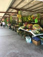 vendor at San Ignacio Market