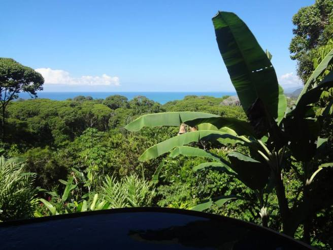 view from house in Costa Rica