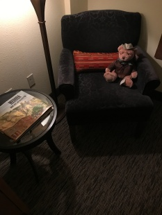 Teddy Roosevelt Stuffed animal and Book on Medora