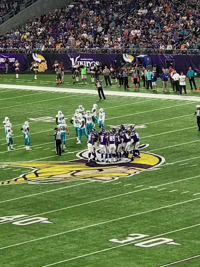 Vikings Lions Game